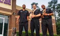 Будни ветеринара: за кадром